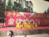 舞蹈《山乡春来早》中国文化传播网艺术总团演出